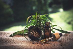 צמח מרפא