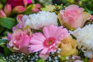 סוגים שונים של פרחים