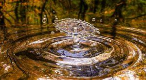 מים ראשית