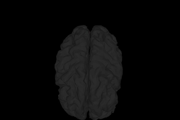 ראש בריא בגוף בריא